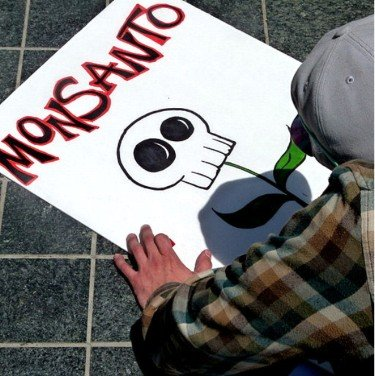 Monsanto Monopoly? The facts Explained 1